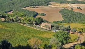 Tuscany farm [ 807]