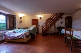 Tuscany, Monte Amiata, properties for sale [785]