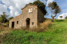 Arcidosso, Monte Labro, agricultural land for sale [2]