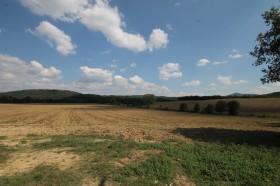 Siena aziende agricole in vendita [AZ215]