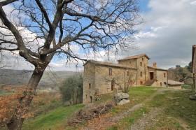 Azienda agrituristica in vendita in Toscana  [AZ 210]