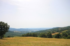 Terreni agricoli in Toscana [AZ133]