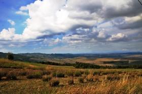 Toscana terreno agricolo in vendita [AZ207]