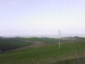 Aziende agricole Toscana [AZ134]