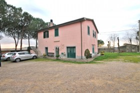 Azienda vinicola Morellino di Scansano Doc [Az151]