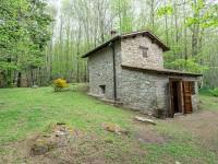 Toscana, rustico con castagneto in vendita[170]