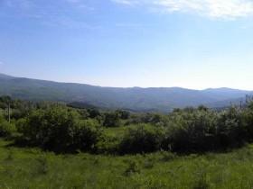Toscana, terreno agricolo in vendita per serre [732]