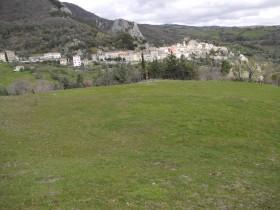 Roccalbegna, in vendita  terreni agricoli e abitazione  [612]