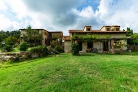 Toscana, azienda agricola in vendita [750]