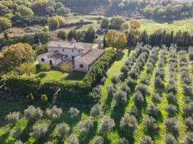 Toscana, azienda agricola in vendita [339]