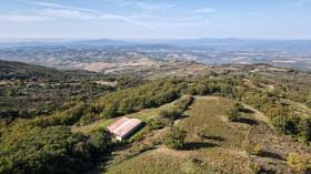 Terreno agricolo in vendita in Toscana[340]