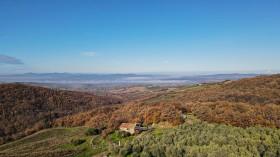 Toscana, azienda agricola in vendita [328]