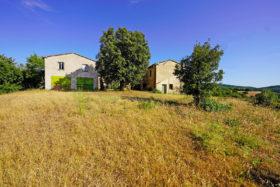 Azienda agricola in vendita in Toscana [331]